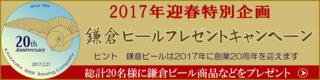 2017迎春キャンペーン.png